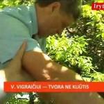 vigraitis
